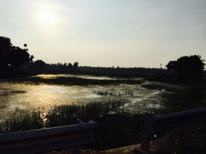 sunset over the lake on the drive to mandya. rural karnataka, india. april 2014.