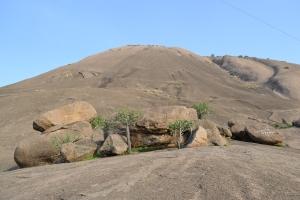 preparing to scale the monolith. savandurga, india. may 2015.