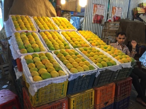i want to eat all the mangoes. bombay, india. may 2015.