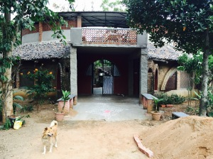one of my favourite spots in all of bangalore: the farm. bangalore, india. july 2015.