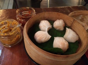 cindy's dumpling starter. bangalore, india. october 2015.