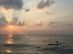 bringing in the early morning catch. pondicherry, india. march 2016.