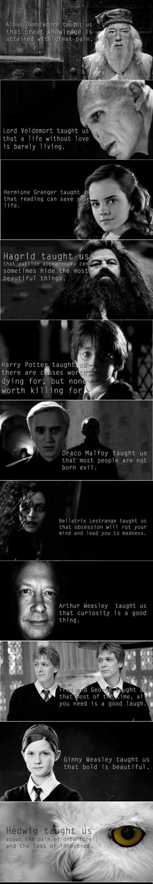 funny-Harry-Potter-teach-us-characters