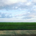 a drive through the delta. highway 61, mississippi. june 2016.