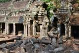 inside ta prohm. siem reap, cambodia. may 2016.