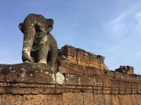 surveying his kingdom. siem reap, cambodia. may 2016.