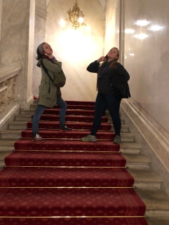 can't take them anywhere. vienna, austria. november 2018.